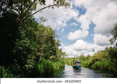 A klotok (a traditional river boat used to navigate the waters) sails on the river on his way to the National Park Tanjung Puting, in Central Kalimantan, Borneo Indonesia