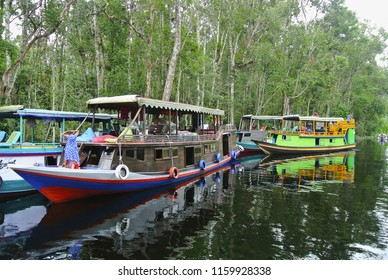 Klotok on Sekonyer river, Indonesia. Sekonyer is a river in southern Borneo. Part of river traverses the Tanjung Puting National Park. Travel on river is often done by klotok, an Indonesian riverboat