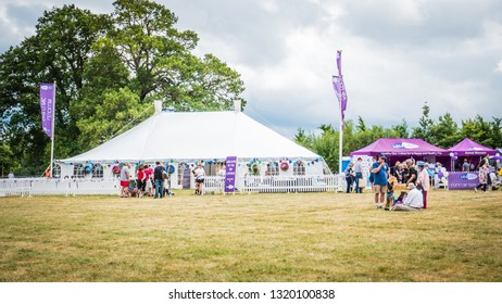Knebworth / UK - 06 24 2017: People walk with their dogs at Dogfest north at Knebworth House near London, UK. Summer British festival for dogs and their owners.