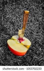 Knife on an apple
