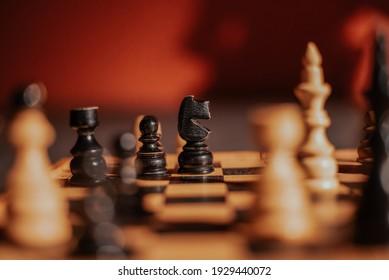 Knight black chess piece on chessboard