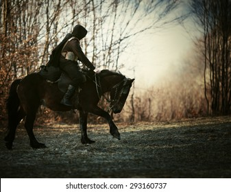 knight and horse,a man riding a horse in the meadow