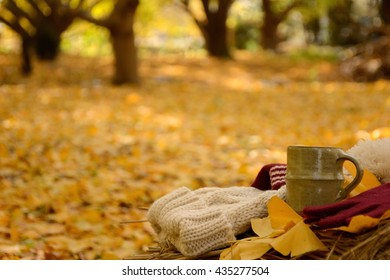 Knit cap & gloves with a coffee cup on autumn yellow leaves