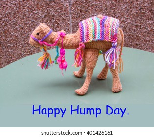Knitted camel with saying Happy Hump Day