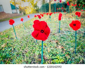 Knitted red remembrance day poppies planted as if in a field on a village green in Kent