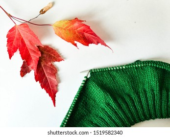 Knitting, elastic, front surface, front loops, green yarn on knitting needles, warm cozy autumn photos, autumn leaves