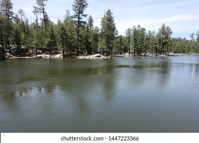Knoll Lake Mogollon Rim Arizona FR300 Trees