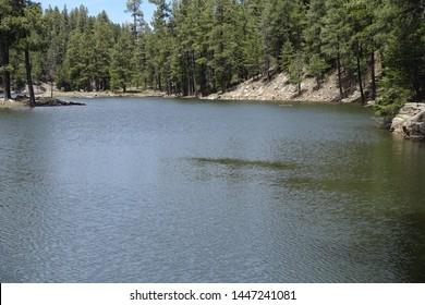 Knoll Lake Mogollon Rim Payson AZ FR300