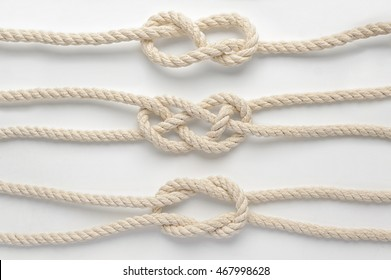 knots on a white background