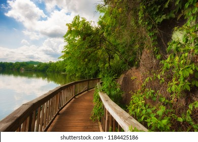 In Knoxville, Tennessee, Ijam Nature Park boardwalk built alongthe shoreline of the Tennessee River