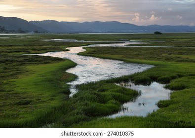Knysna wetlands at sunset, South Africa