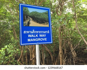 KO TAN ISLAND THAILAND , NOVEMBER 25,2018 : Signboard in front of Mangrove Forest shows the direction walkway to the protected black and white Mangrove Forest park at the island of beauty nature.