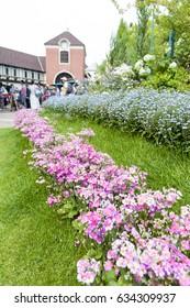 Kobe, Japan - April 2016: Pink flowers at Nunobiki Herb Garden on Mount Rokko in Kobe, Japan