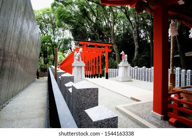 KOBE, JAPAN - JULY 08, 2017: Backside of Torii, symbolic red gateway of Ikuta Shinto shrine, can see a pair of Kitsune or fox statue and stone pillars