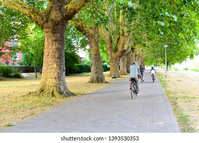 KOBLENZ, GERMANY - AUG 11,2018 : People ride bicycle in garden where there are many big old trees in a row during summer