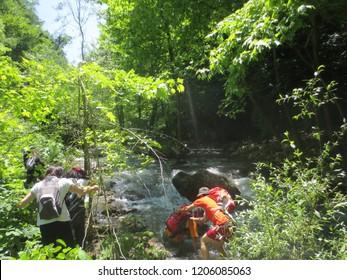 Kocaeli / Turkey - 06.14.2015: Serindere river hiking trail