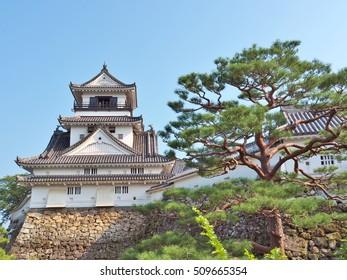 El Castillo de Kochi es un castillo japonés en Kochi, prefectura de Kochi, Japón. El Castillo de Kochi es un castillo en la cima de una colina que fue construido por Yamanouchi Kazutoyo en 1601 y que fue completado en 1611.