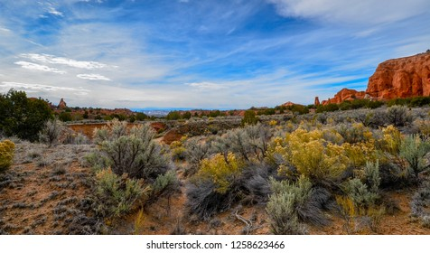 Kodachrome State Park Utah, Wide angle lens view of great desert landscape vista with rugged terrain, plants, and rocks
