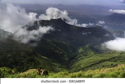 Kodaikanal Moir or Suicide point, Tamil Nadu, India