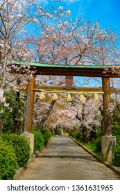 Kofukuji, Kyoto, Japan in spring - Shutterstock ID 1361631965