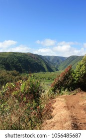 The Kohala Mountains filled with lush vegetation, forming Pololu Valley, in North Kohala, Hawaii, USA