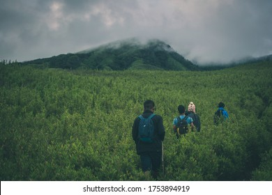 KOHIMA, INDIA - Jul 29, 2019: A group of people Hiking in the Unexplored Dzukou valley of Nagaland in one of the Northeast states of India