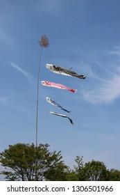 Koinobori (carp streamer) waving under the blue sky