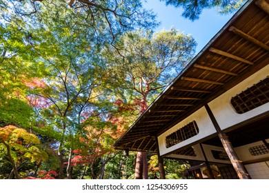 "KOKUBUNJI, TOKYO / JAPAN - NOVEMBER 23 2018 : The landscape of ""Tonogayato Garden"" in autumn season. There is a resting place called ""Momiji-tei"" on the hill of the garden."