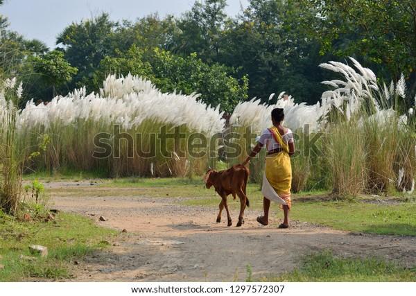 Kolaghat West Bengal India Oct 02   Royalty-Free Stock Image