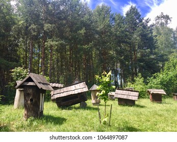 KOLBUSZOWA, POLAND - JUNE 21, 2017: Old wooden bee hives standing in the field the open air folk museum in Kolbuszowa, Poland.