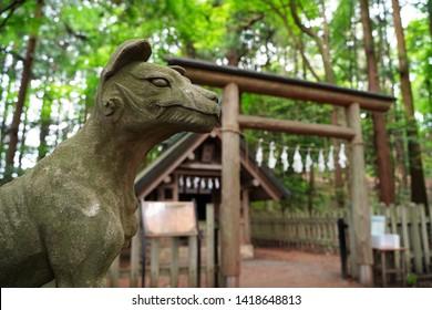 Komainu (shrine guardian dog statues) at Hotosan Jinja Shrine Okumiya at Chichibu, Saitama, Japan.  At Hotosan Jinja Shrine, It is wolf, guardian wolf statue, God's bodyguard.