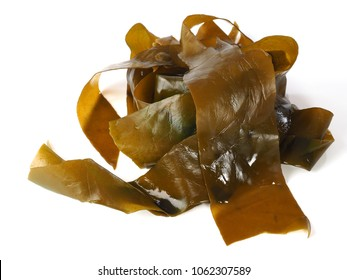 Kombu Kelp - Alga Kombu  Kombu kelp is a large brown algae seaweed. Binomial name: Laminaria Ochroleuca. It is an edible seaweed used extensively in Japanese cuisine.