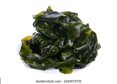 Kombu kelp is a large brown algae seaweed. Binomial name: Laminaria Ochroleuca. It is an edible seaweed used extensively in Japanese cuisine. on white background