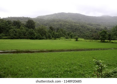 Kondana village in Karjat, situated near Mumbai, in the Indian state of Maharashtra, Its steep Ulhas Valley is lush in the rainy season, with a full river and waterfalls.
