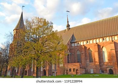 Konigsberg cathedral at sunset. Kaliningrad