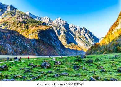 Konigssee (Koenigssee, Königssee, Königsee, Koenigsee, Konigsee, Konig) Salet by Obersee lake in autumn. Bayern  (Bavaria), Germany.