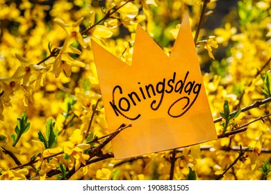 Koningsdag or King's Day is a national holiday in the Kingdom of the Netherlands. Paper cut crown with an inscription Koningsdag against the background of flowers
