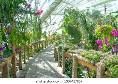 Konya, Turkey - 21 Sept, 2018: Konya Tropical Butterfly Garden, is the garden which has biggest butterfly flying field in Europe and first in Turkey.