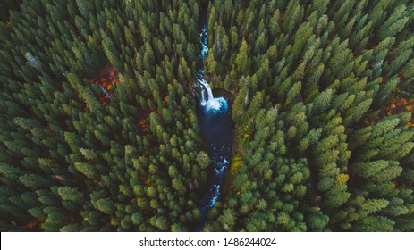 Koosah Falls, one of the famous waterfalls of Central Oregon, is the gem of the McKenzie River.