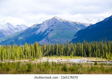Kootenay Valley with autumn leaves, Kootenay National Park, Canadian Rockies, British Columbia, Canada