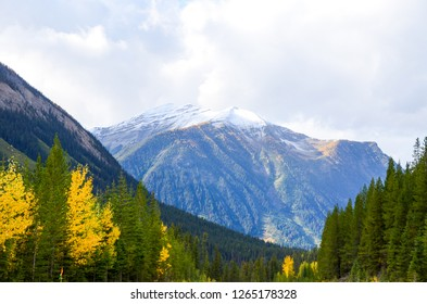 Kootenay Valley with autumn leaves and snowcapped mountain , Kootenay National Park, Canadian Rockies, British Columbia, Canada