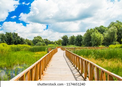 Kopacki rit nature park and wooden path, Slavonia, Croatia, popular tourist destination and birds reservation