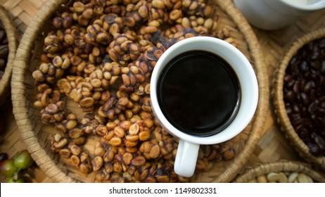 Kopi luwak or civet coffee, Coffee beans excreted by the civet. Tasting in Da Lat, Vietnam.Weasel coffee.