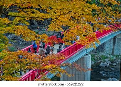 Korankei, Japan : On November 23,2016 - Crowd of tourists enjoy the autumn foliage at Korankei, Nagoya, Japan.