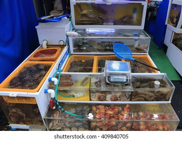 KOREA - APRIL 22, 2016: : View of Jagalchi Market , Fish market, Busan , Korea