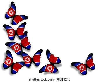 Korean flag butterflies, isolated on white background