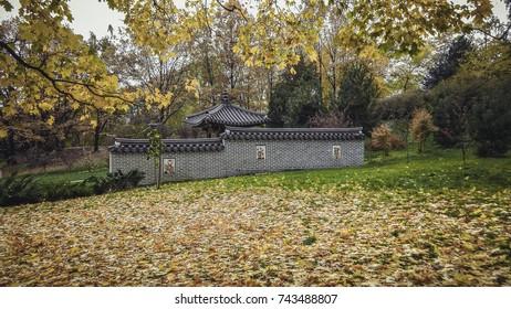 Korean house in autumn park