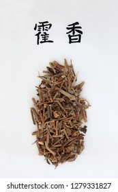 Korean mint herb used in chinese herbal medicine with calligraphy script. Translation reads as Korean mint. Used to help diabetes, anaemia, osteoporosis & allergies. Huo xiang.  Agastache rugosa.