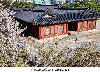 Korean Palace - Changgyeonggung
