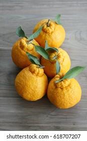 Korean style orange